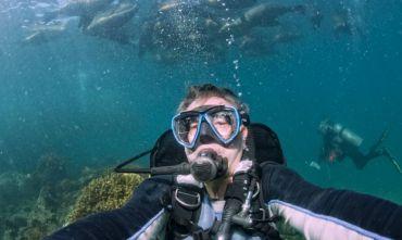 5 giorni a Santa Cruz: 2 full day di immersioni + tour a scelta tra 4 isole