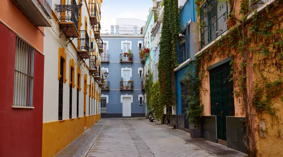 Macarena Barrio - Siviglia