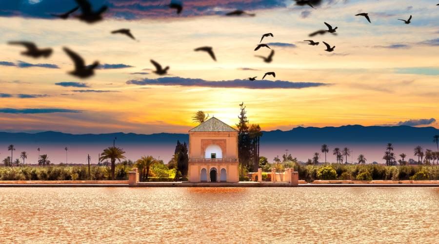 Giardino - Marrakesh