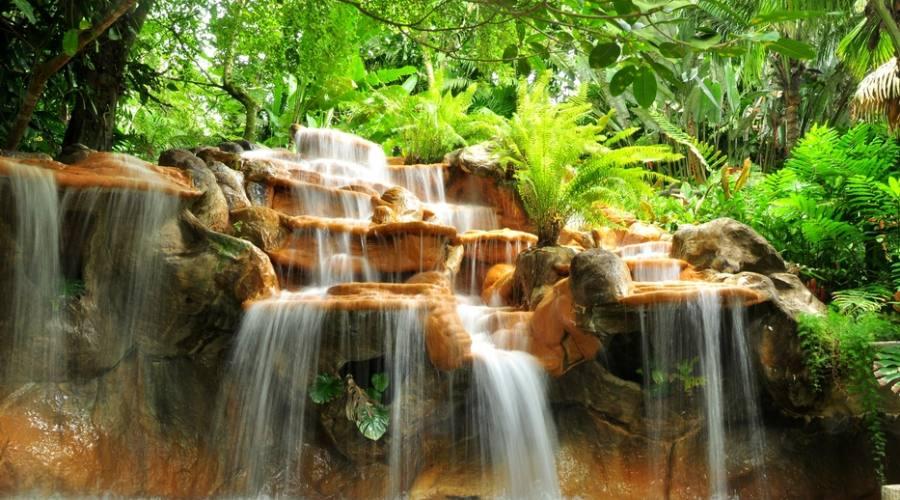 Costa Rica: cascate e foreste