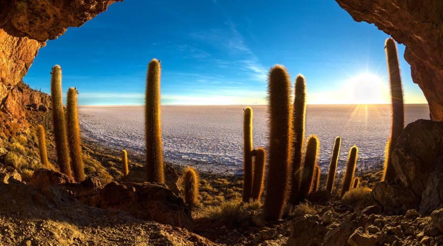 Isola dei Cactus, Salar de Uyuni, Bolivia