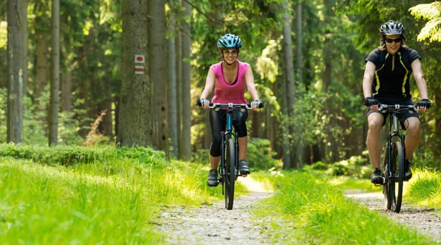 In bici nei boschi