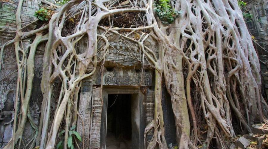 templi e natura