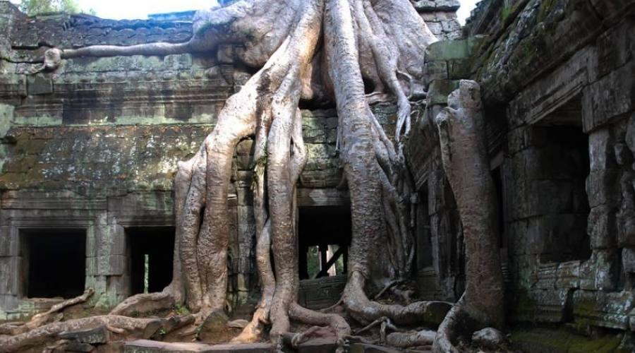 templi