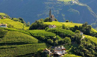 Nel cuore del Sud Tirolo: a piedi tra i castagneti e i vigneti delle Dolomiti
