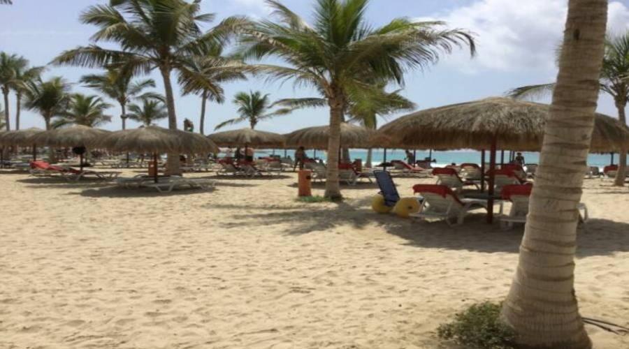 Spiaggia con  sedia JOB