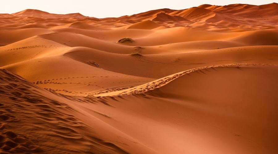 Marocco, deserto del Sahara