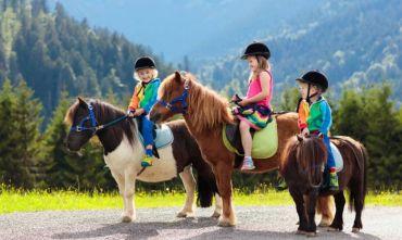 Vacanza in famiglia: Natura e divertimento per grandi e piccoli