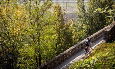 In bici nella pianura emiliana tra gastronomia e arte