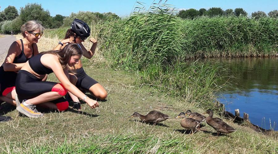 Bambini con anatre