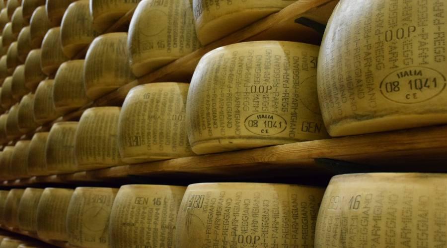 Parmigiano Reggiano in stagionatura