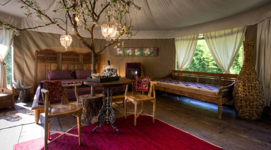 luxory lodge Gelso interno