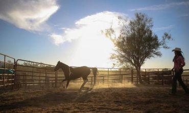 Vita da cowboy di lusso ai piedi del Rincon