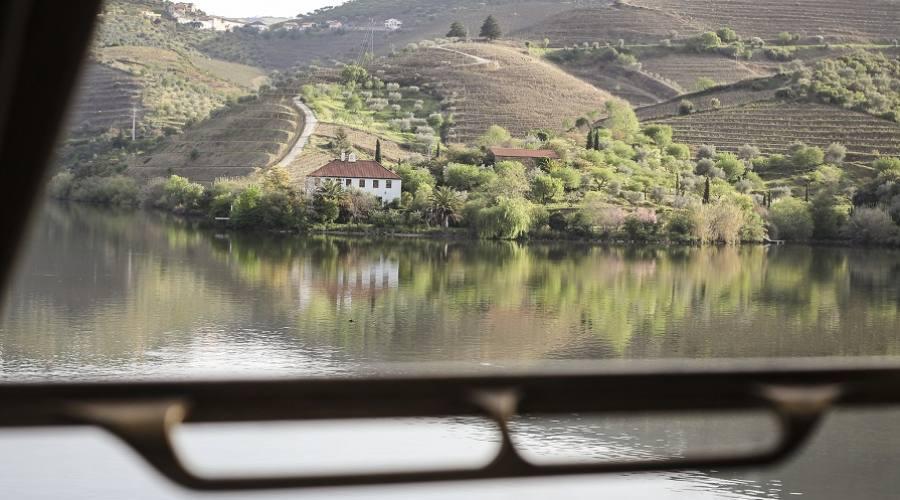 Paesaggi dal finestrino