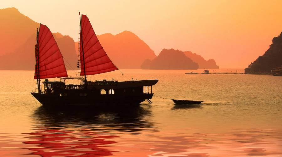 Giunga vietnamita