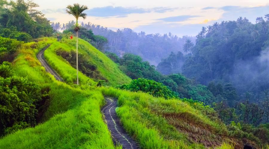 Paesaggio balinese