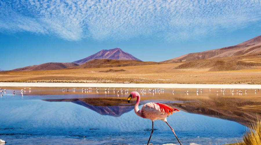 Ruta de Joyas - Bolivia