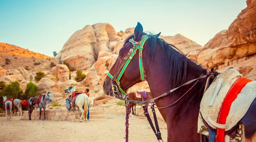 Petra - Patrimonio Unesco