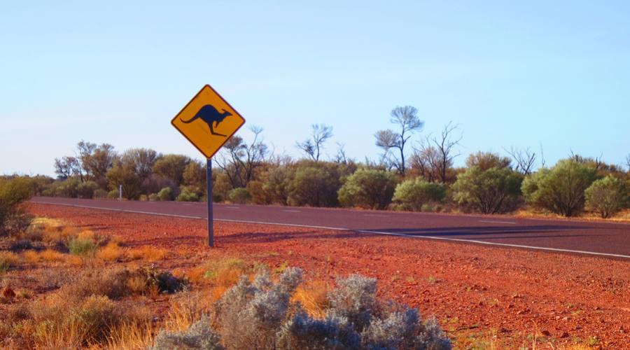 Strada verso il Little Sahara - Kangaroo Island