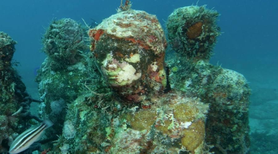 Museo sottomarino di Isla Mujeres
