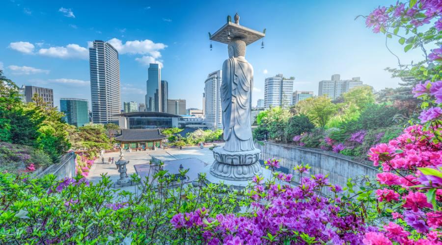 Seoul - Bongeunsa Temple
