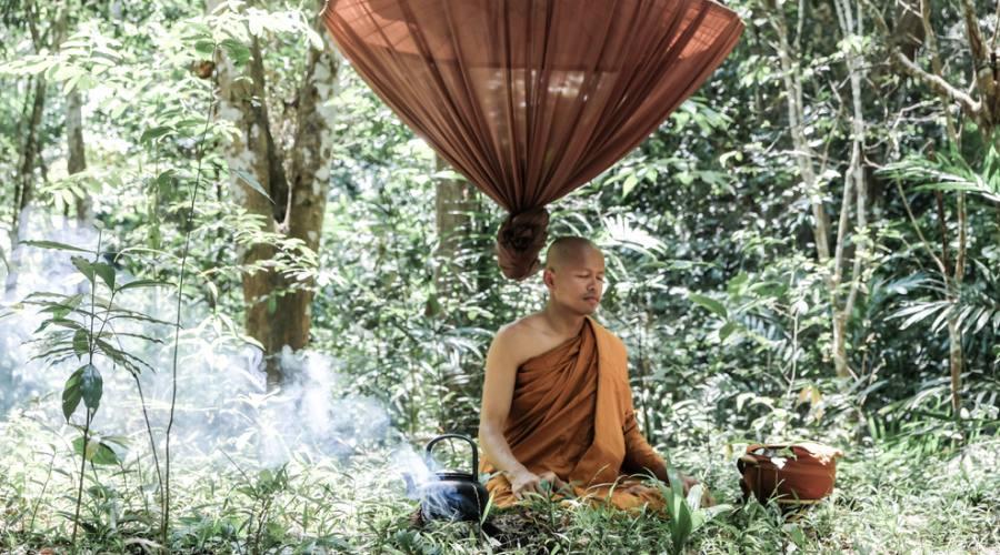 Temple Experience - meditazione zen