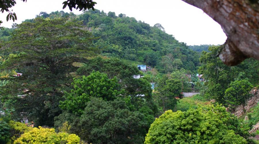 Nine Miles - villaggio natale di Bob Marley