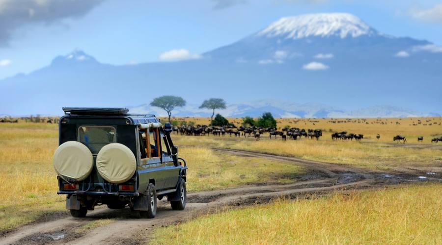 Maasai Mara - Game drive