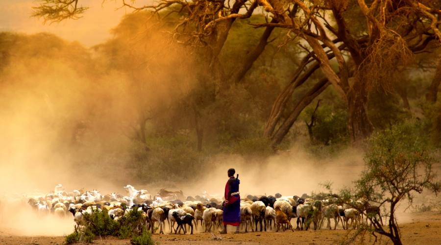 Pastori Maasai
