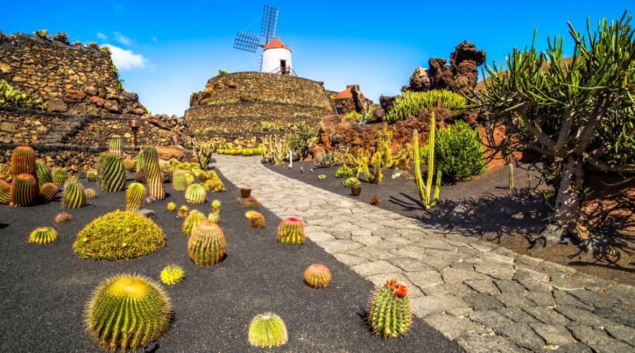 Lanzarote - Jardin de Cactus di Guatiza