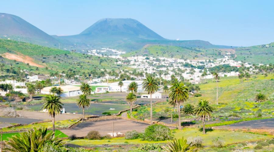 Lanzarote - Valle delle mille palme