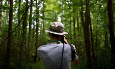 Tour: foreste pluviali e spiagge da sogno mix