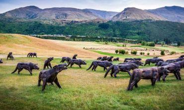 Il meglio del Golf in Nuova Zelanda!