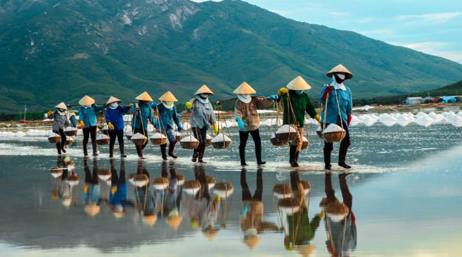 Colonna di lavoratrici che trasporta il sale