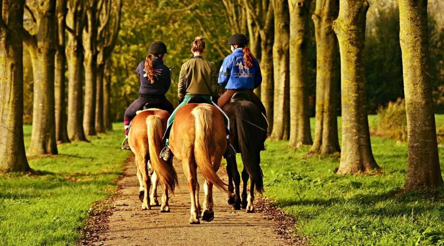Giovani ragazze a cavallo