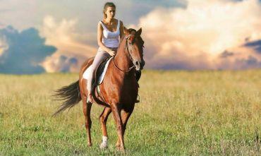 A cavallo dalla Provenza alla Camargue