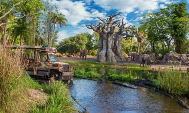 Disney's Animal Kingdom e la spettacolare fauna mondiale