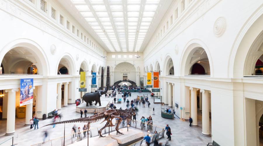 Museo delle scienze di New York