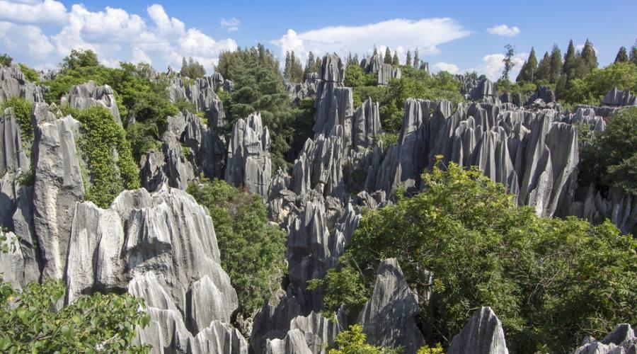 Kunming Foresta di Pietra
