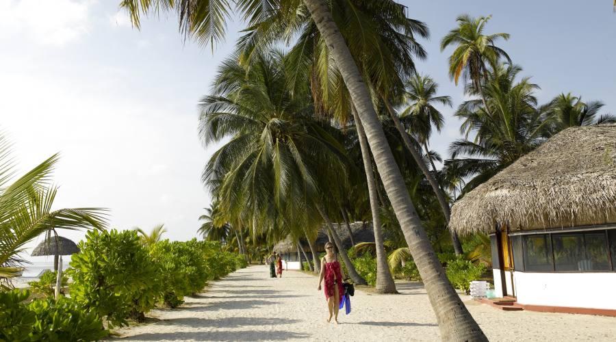 Bangaram Resort , la natura