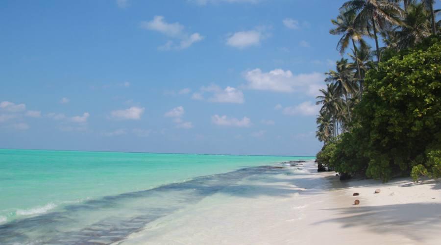 la spiaggia e il mare delle isole Laccadive