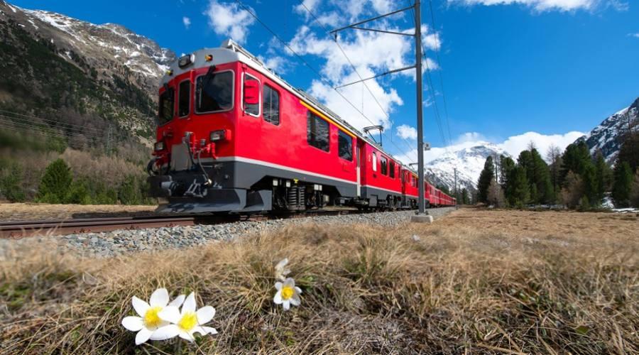 Trenino Rosso del Bernina in primavera