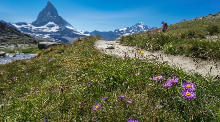 Da Gornergrat a Riffelberg - Zermatt, Svizzera
