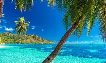 Combinato di quattro Isole della Polinesia