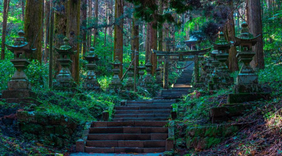 Tempio nella foresta a Kumamoto