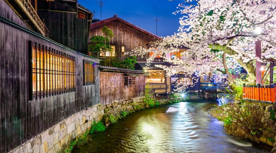 Kyoto durante la fioritura