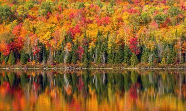 Esperienza nella natura Canadese con vere guide Indiane.