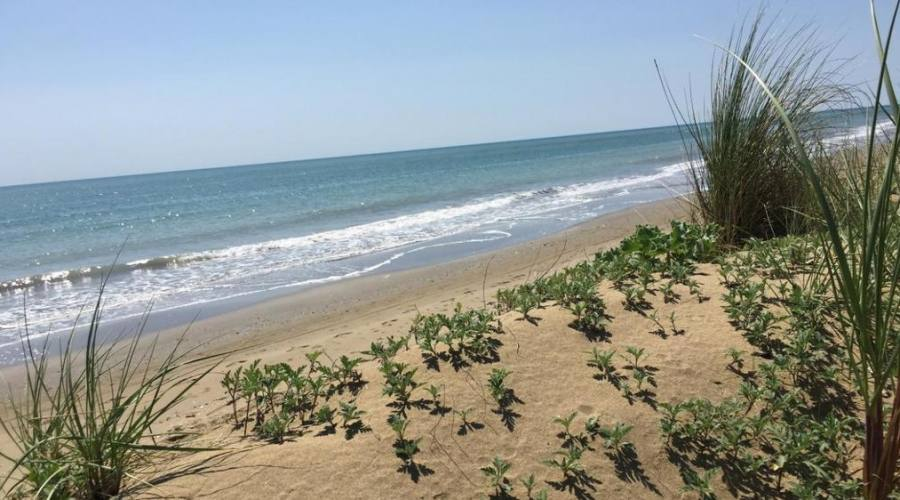 Spiaggia libera Caorle