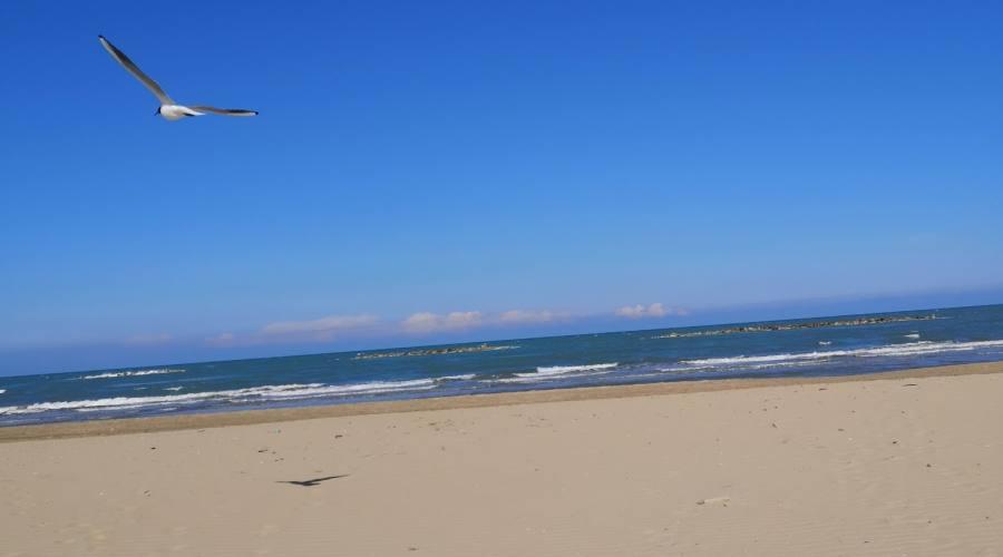 Spiaggia adriatica