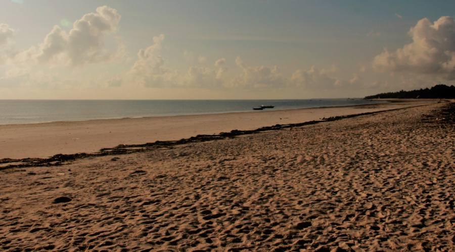 La costa est